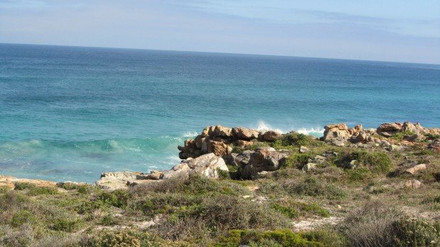 water cape of good hope