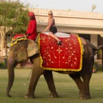 becca-hensley-riding-elephant