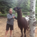 becca-hensley-hiking-with-llama-vail-colorado